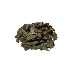 Chá Verde Nacional